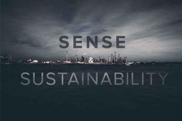 Sense and sustainability header