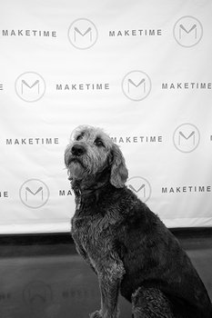 Bosley Chief Barketing Officer